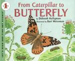 Book cover of FROM CATERPILLAR TO BUTTERFLY BIG BOOK