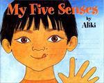 Book cover of MY 5 SENSES BIG BOOK