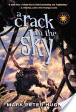 Book cover of CRACK IN THE SKY