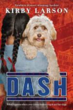 Book cover of DASH