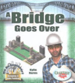 Book cover of BRIDGE GOES OVER