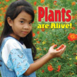 Book cover of PLANTS ARE ALIVE