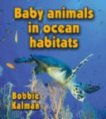 Book cover of BABY ANIMALS IN OCEAN HABITATS