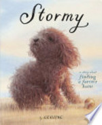 Book cover of STORMY - A STORY ABOUT FINDING A FOREVER