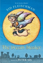 Book cover of DREAM STEALER