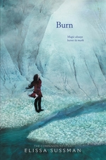 Book cover of BURN