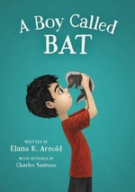 Book cover of BOY CALLED BAT