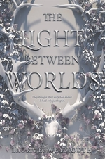 Book cover of LIGHT BETWEEN WORLDS