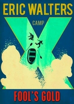 Book cover of CAMP X FOOL'S GOLD
