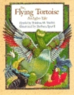 Book cover of FLYING TORTOISE