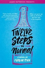 Book cover of 12 STEPS TO NORMAL