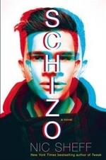 Book cover of SCHIZO A NOVEL