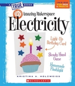 Book cover of AMAZING MAKERSPACE DIY ELECTRICITY