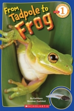 Book cover of FROM TADPOLE TO FROG