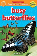 Book cover of BUSY BUTTERFLIES