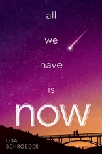 Book cover of ALL WE HAVE IS NOW