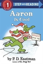 Book cover of AARON IS COOL