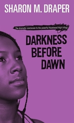 Book cover of DARKNESS BEFORE DAWN