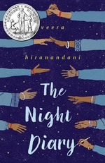 Book cover of NIGHT DIARY