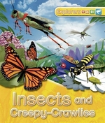 Book cover of EXPLORERS - INSECTS & CREEPY-CRAWLIES