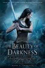 Book cover of BEAUTY OF DARKNESS