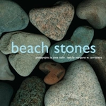 Book cover of BEACH STONES