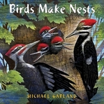 Book cover of BIRDS MAKE NESTS