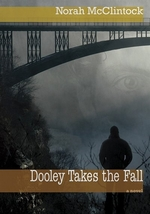Book cover of DOOLEY TAKES THE FALL