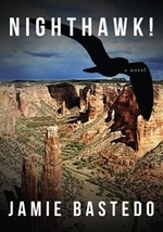 Book cover of NIGHTHAWK