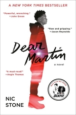 Book cover of DEAR MARTIN