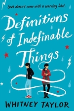 Book cover of DEFINITIONS OF INDEFINABLE THINGS
