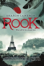 Book cover of ROOK