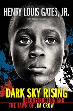 Book cover of DARK SKY RISING - RECONSTRUCTION & THE D