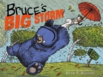 Book cover of BRUCE'S BIG STORM