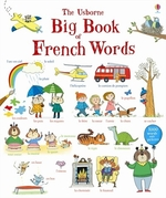 Book cover of BIG BOOK OF FRENCH WORDS