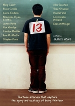 Book cover of 13
