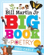 Book cover of BIG BOOK OF POETRY