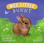 Book cover of WEE LITTLE BUNNY