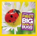 Book cover of NG LITTLE KIDS 1ST BIG BOOK OF BUGS