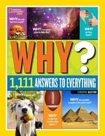 Book cover of NG KIDS - WHY 1111 ANSWERS TO EVERYTHING