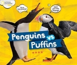 Book cover of NG PENGUINS VS PUFFINS