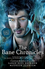 Book cover of BANE CHRONICLES