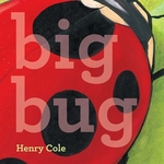 Book cover of BIG BUG