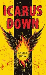 Book cover of ICARUS DOWN