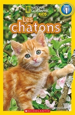 Book cover of NG - CHATONS NIVEAU 1