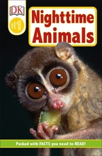 Book cover of NIGHTTIME ANIMALS