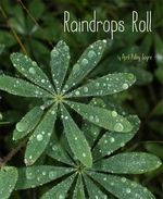 Book cover of RAINDROPS ROLL