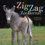 Book cover of ZIGZAG ZOOBORNS