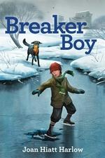 Book cover of BRAKER BOY