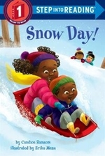 Book cover of SNOW DAY
